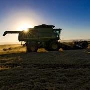 New- Rice Commission Internship