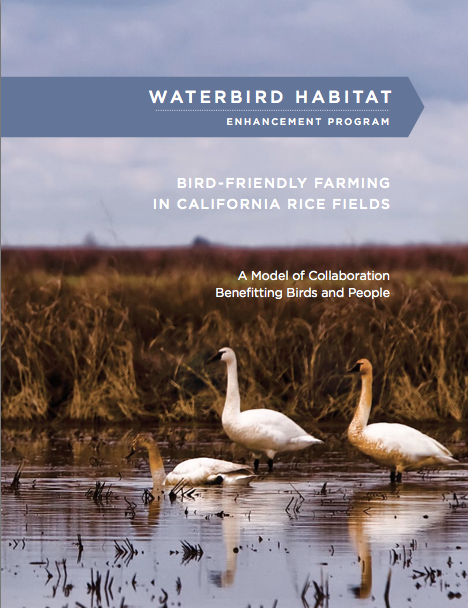 Waterbird Habitat Enhancement Program
