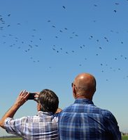 Radio hosts Armstrong & Getty watching birds