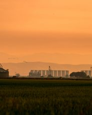hazy skies from wildfires over rice silos